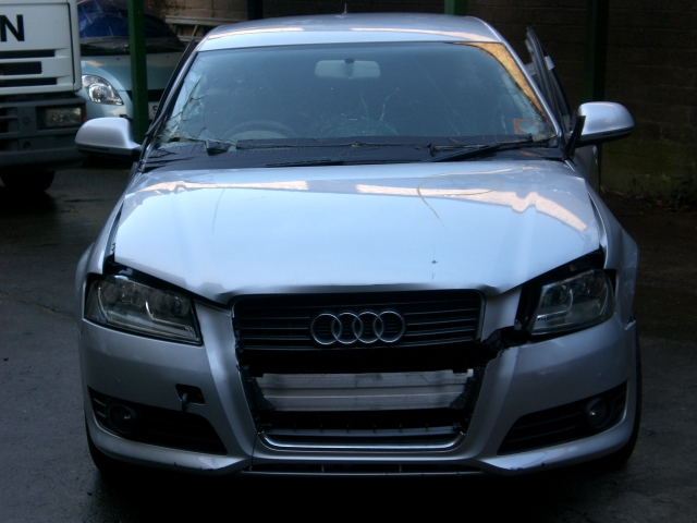 Audi A3 Door Check Strap Front Drivers Side -  - Audi A3 2010 Diesel 1.6L 2008--2012 Manual 5 Speed 5 Door ic Windows Front & Rear, Alloy Wheels 16 inch, Silver Eng Code CAY