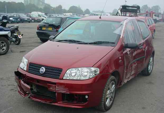 Fiat Punto Door Check Strap Front Drivers Side -  - Fiat Punto 2005 Petrol 1.2L Manual 5 Speed 3 Door Alloy Wheels 14 inch, Wine